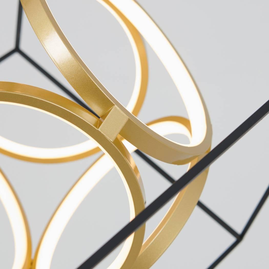 Luxury LED integrated Pendant