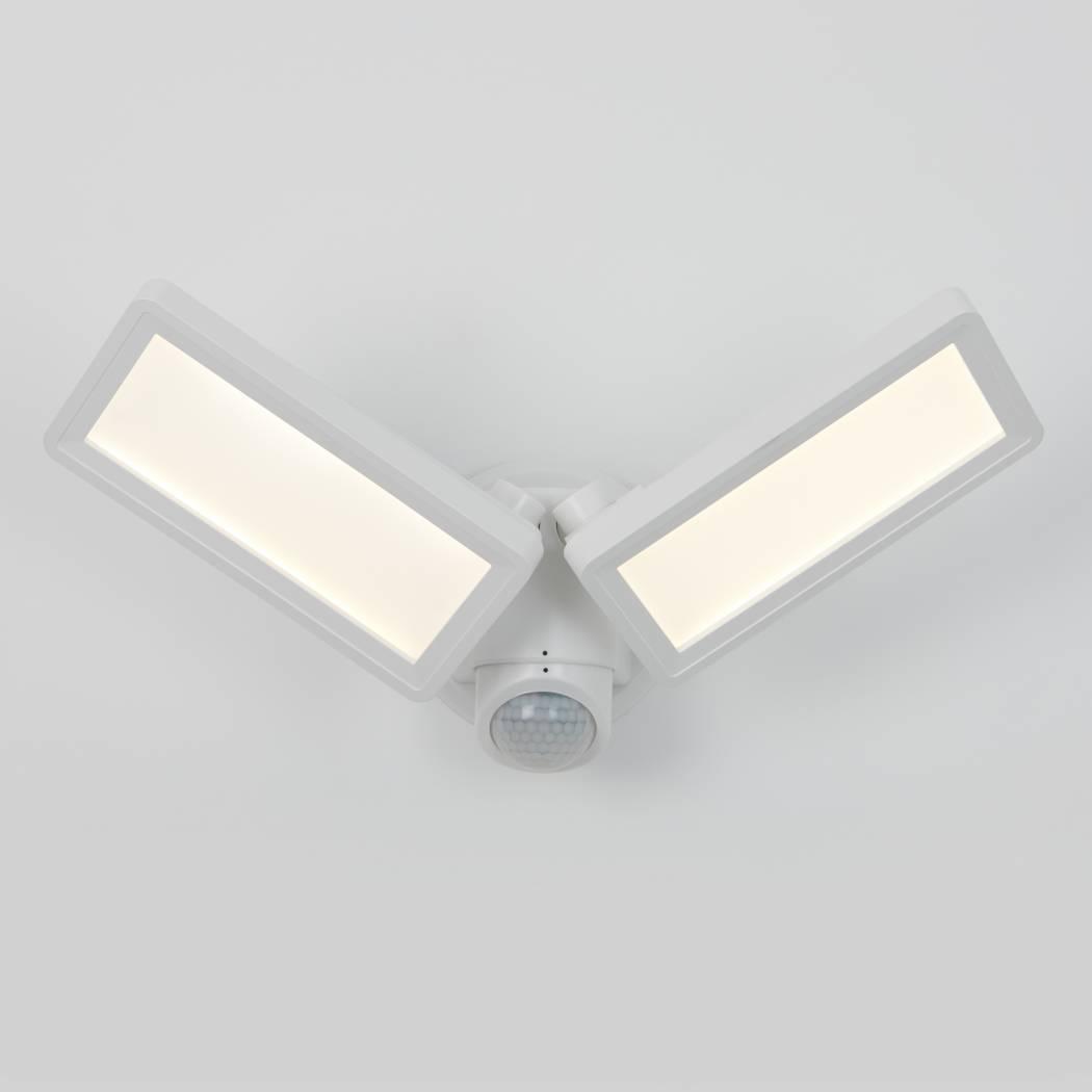 Sentinel Outdoor Flat Panel Security Light